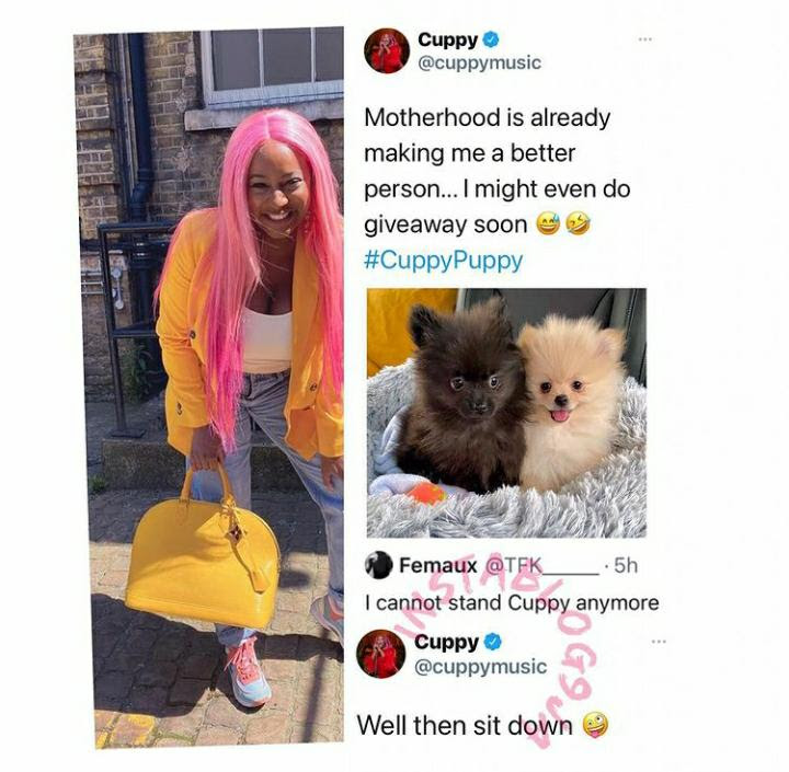 DJ Cuppy slams troll who can't stand her 'transition to motherhood' with puppies